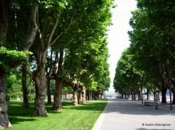 Koblenz Promenada Rinului