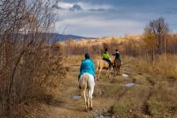 Calare in Colinele Transilvaniei
