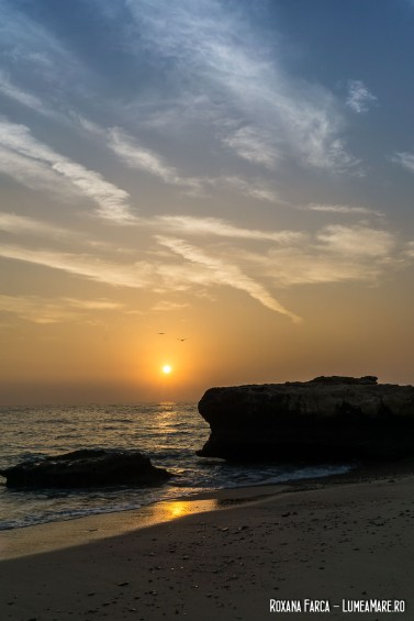 Oman-White-Sands-9227