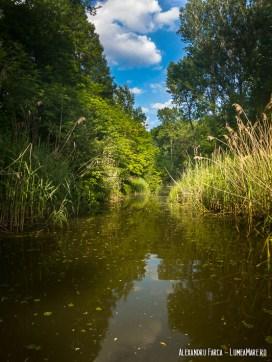 Water Park Tulln