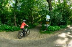 Parcul din Tulln, loc ideal de plimbare cu bicicletele si caiacele