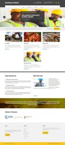 coalesce global websire design project