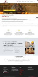 website design for overkill pest by Lumena. web design web development owerri imo and port harcourt nigeria