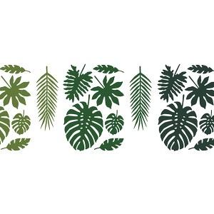 Tropiske blade Hawaii