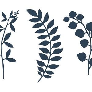 Grene med blade dekorationer