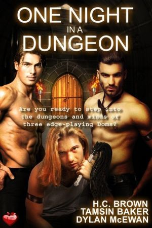 One Night in a Dungeon anthology