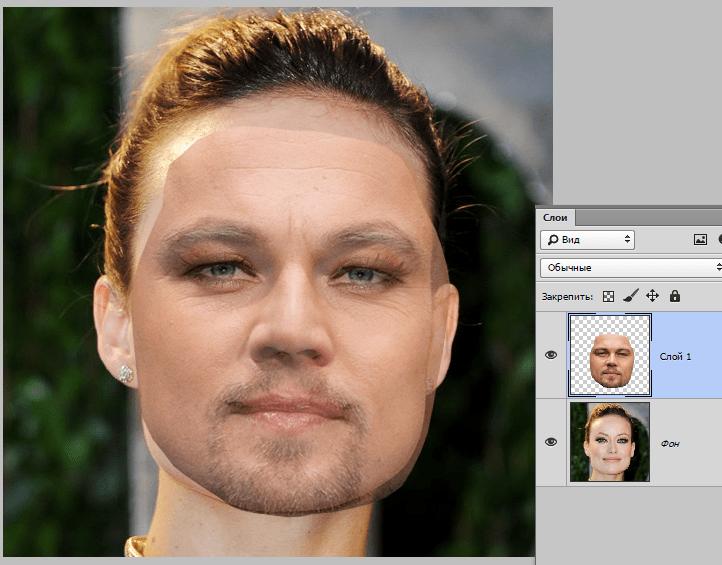 Заменить лицо на фото в интернете ела