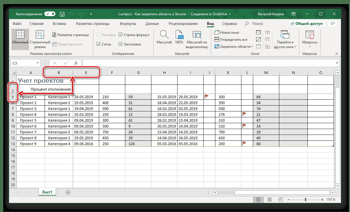 Området med kolumner och rader är igensatt i Microsoft Excel-tabellen