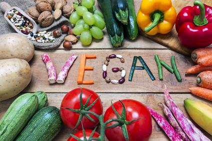 Image result for veganism