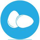 icon_eggs