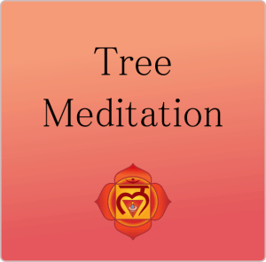 Tree Meditation - Guided Meditation - LunaHolistic.com