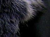 ムートン生地:黒Ⅱ