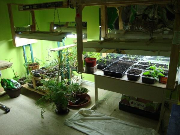indoor gardening lights indoor garden | LunarHarvest