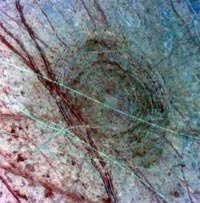 Crater Pwyll on Europa