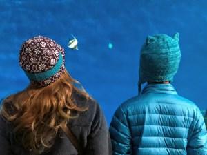 LunaSea Adventures ! Point Defiance Zoo & Aquarium