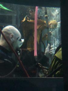 Point Defiance Zoo & Aquarium shark dive