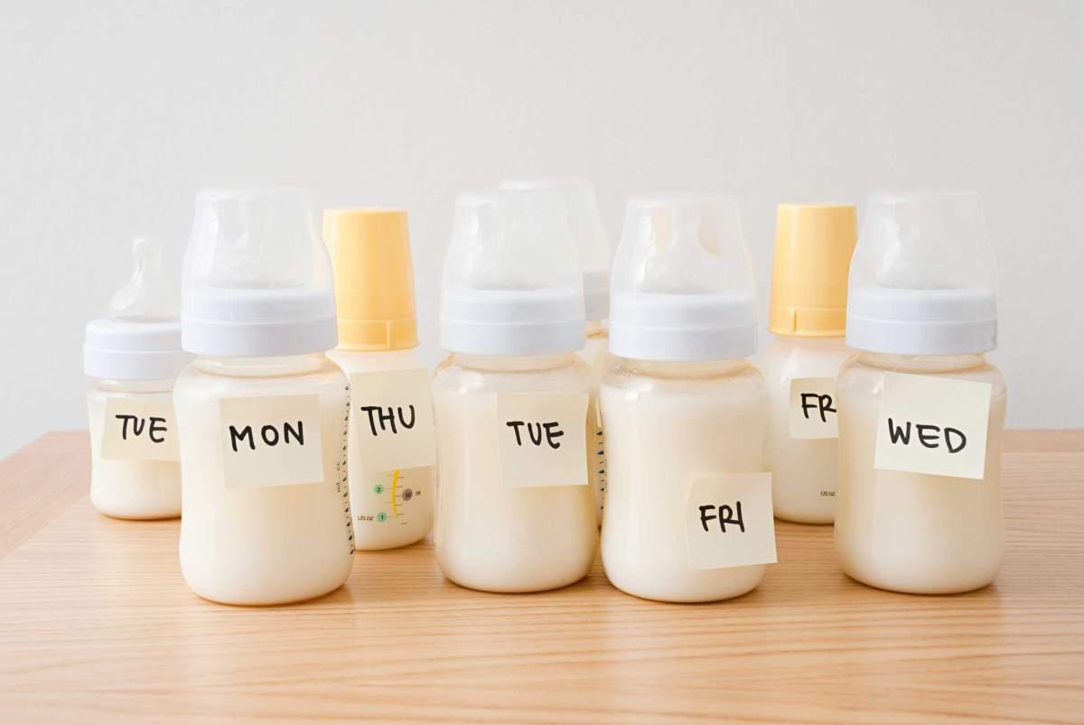 Berapa Banyak (oz) Bayi Minum Susu Ibu