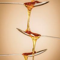 Aprende acerca del Polen: el súper alimento más completo, la magia de la miel y los productos de la abeja