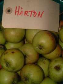 "Hawthornden (""Hårton"")"