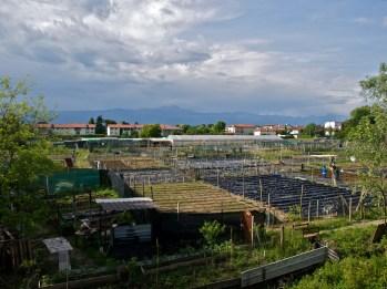 L'orto delle Coccinelle dalla Provinciale