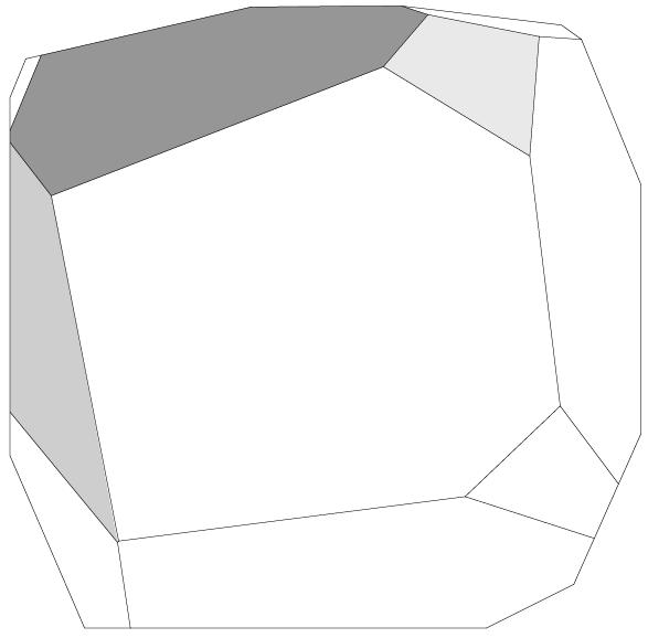 immagine-45