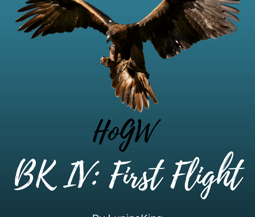 HoGW BK IV: First Flight