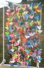 450-butterflies