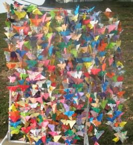 750-butterflies