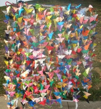 900-butterflies