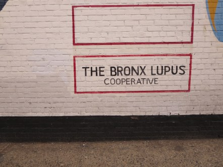 Title: Bronx Lupus Support Group – My Second Home. Caption: It's a life saver. Photographer: Dawn