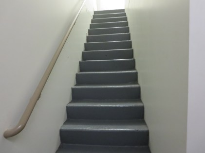 Title: The Stairs Caption: My daily challenge with lupus. Photographer: Elaine