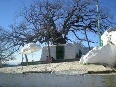 The shrine of Moulay Abdessalam Ibn Mashish