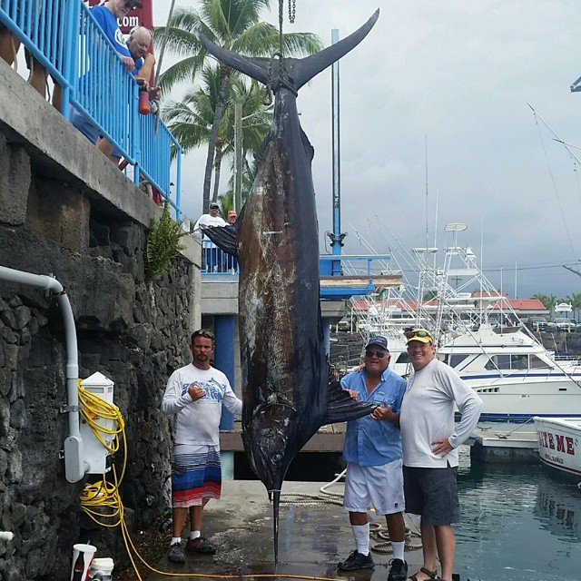Kona Fishing 101  The Weekly Report for April 28, 2015