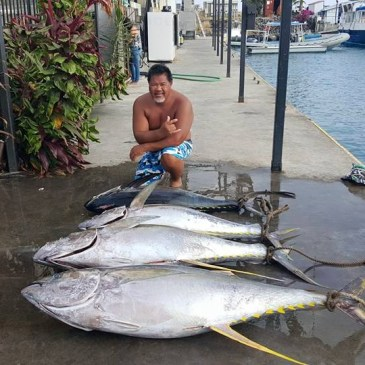 Kona fishing tuna record on the way?