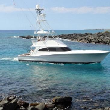 Chasing 100 blue marlin