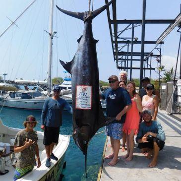 Birthday billfish, monster ahi, giant job fish