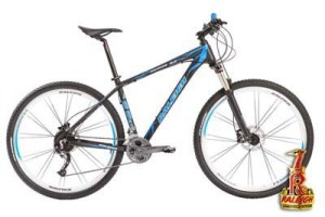 Raleigh 5.0 Rod. 27,5 y 29