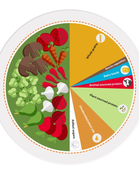 EAT-Lancet Commission's flexitarian diet or Planetary Health Diet