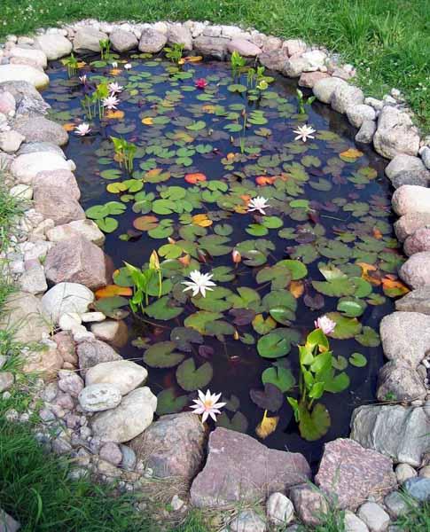 21 Garden Design Ideas, Small Ponds Turning Your Backyard ... on Backyard Pond Landscaping Ideas  id=35450