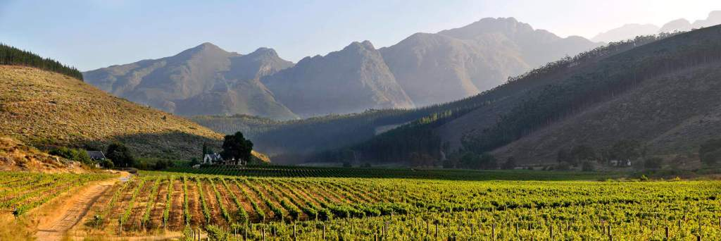 Glenwood Vineyards, South Africa | wineries with a view