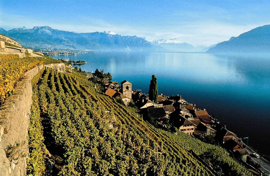 Lavaux Vineyards, Switzerland | wineries with a view