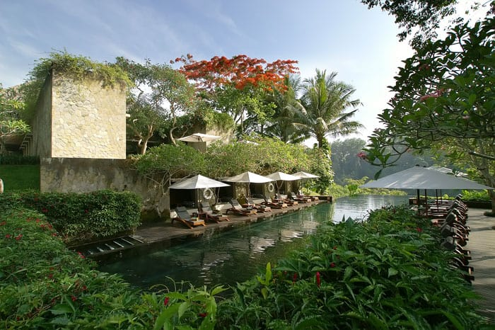 Most Beautiful Pools In The World / Maya, Ubud