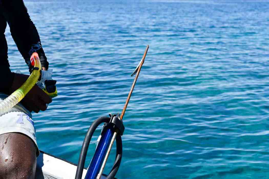 fiji spearfishing