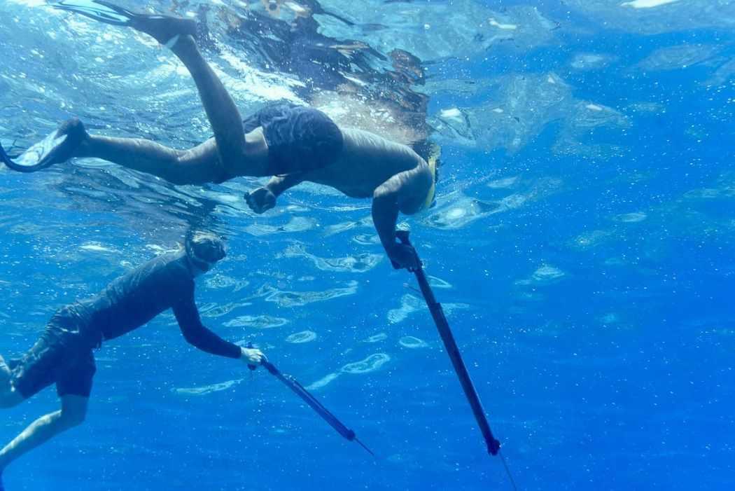 Fiji islands Qamea island spearfishing fiji