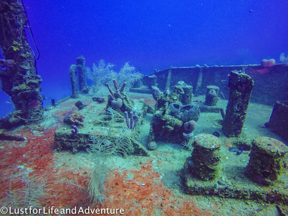 Wreck diving in roatan honduras - Roatan dive sites ...