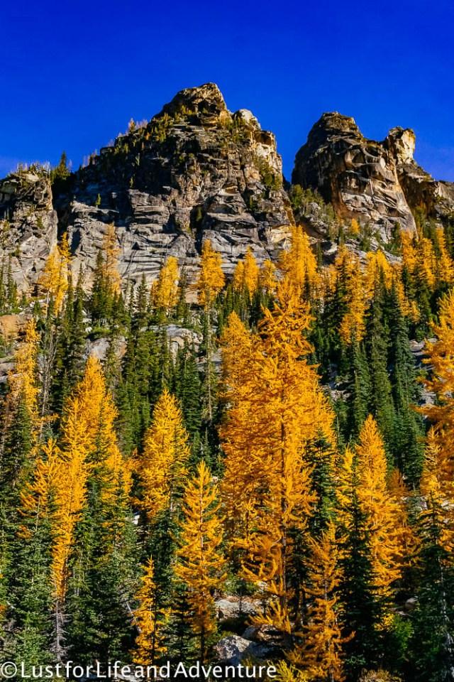 north-cascades-131