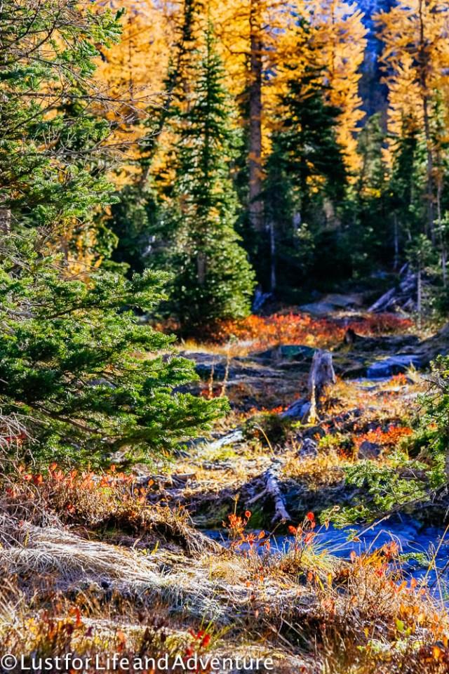 north-cascades-142