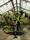 Seandainya nggak memungkinkan untuk punya hunian dengan halaman yang cukup, saya mengimpikan taman mungil yang teratur seperti Rumah Anggrek di Kebun Raya Bogor ini. (Kreditasi foto: Mahandis Y. Thamrin)