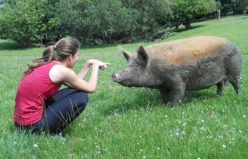 In later years, The Child still had an affinity for Pigs if not pancakes (or not so much, anyway)