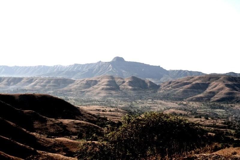 What was behind dinosaurs' extinction? - Lutheran Alliance